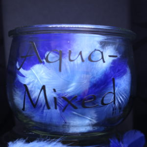 Aqua-Mixed Winterkurse
